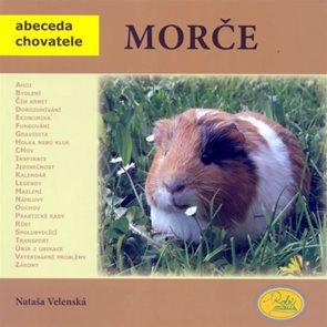 Morče - Abeceda chovatele