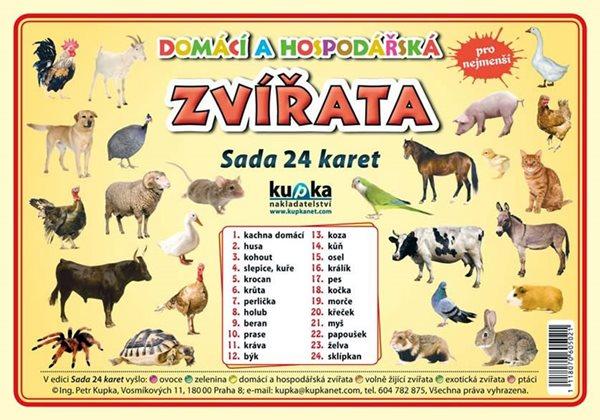 Domácí a hospodářská zvířata - Sada 24 karet - Kupka a kolektiv Petr - 14,8x21,2