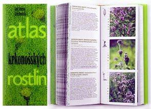 Atlas krkonošských rostlin