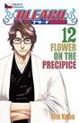Bleach 12: Flower on the Precipice